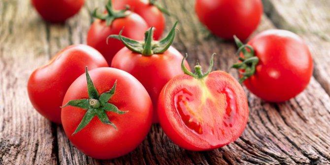 Pengalaman pertama menanam tomat