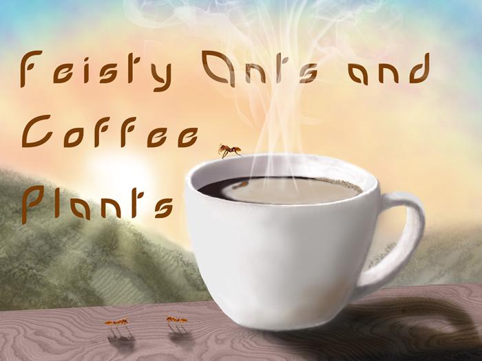 Antara penulis, Semut, dan Secangkir kopi