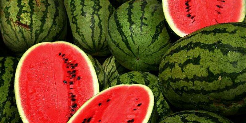 Cerita mengikat semangka